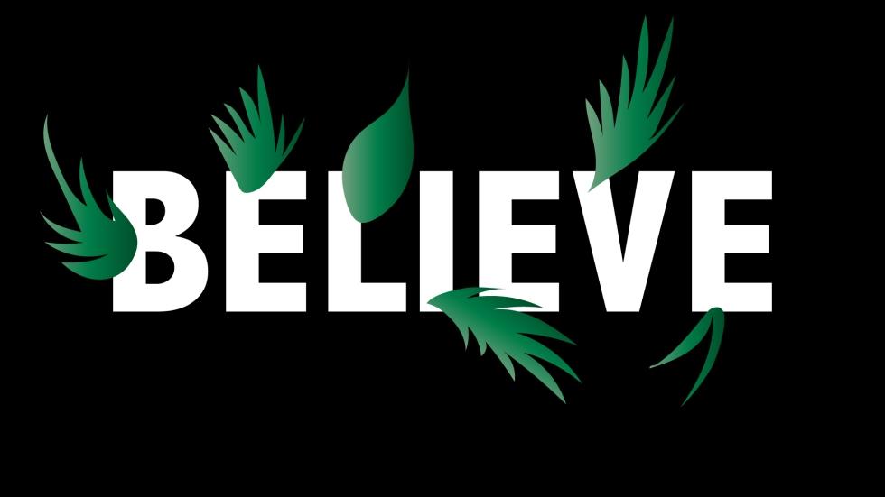 BELIEVE 5-01